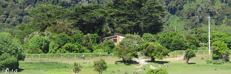 Isla Mocha 1